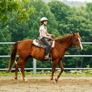 Horsemanship Camp