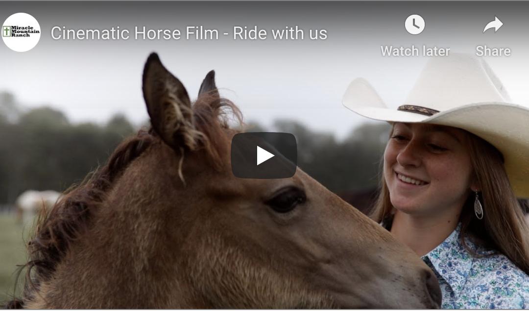 Cinematic Horse Short Film